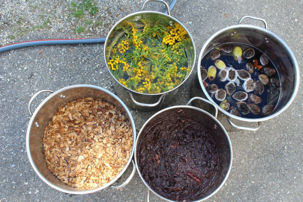 Assortment of natural dyes in their pots